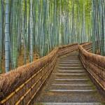 Как пользоваться бамбуковым веником для бани