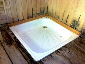 Чем удалить грибок в бане